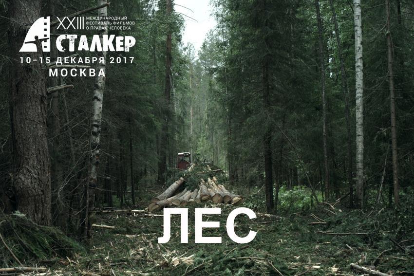 Игровой фильм «ЛЕС» в конкурсе «СТАЛКЕРА»